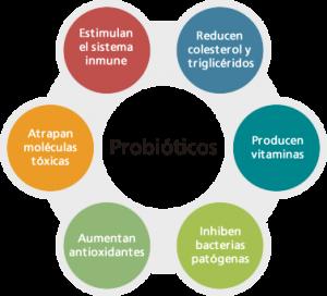 Probióticos, que son y que beneficios nos aportan en esta época del año. Blog de farmacia, Farmacia El Romeral, Farmacia Vélez Málaga.